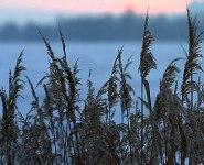 Озера и экотропы Беларуси после ввода БелАЭС сохранятся в первозданном виде - Минприроды