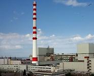 Обращение с РАО при выводе из эксплуатации Ленинградской АЭС будет производиться под контролем научной общественности