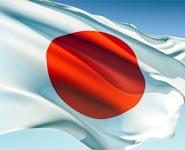 Правительство Японии не включило в доклад по энергетике пункт о полном отказе от АЭС