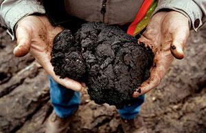 В Беларуси в перспективе может быть налажена добыча сланцевой нефти