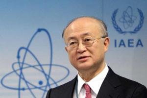 Глава МАГАТЭ обсудит в России развитие атомной энергетики и проблемы ядерного нераспространения <br />
