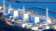 """Разработки белорусских ученых используются в реабилитации территорий вокруг АЭС """"Фукусима-1"""""""