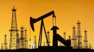"""""""Белоруснефть"""" планирует развивать проекты по добыче нефти и газа в Латинской Америке"""