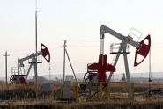"""Компания """"Шлюмберже"""" заинтересована в сотрудничестве с Минприроды Беларуси в сфере разведки нефтяных месторождений"""