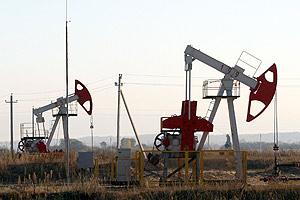 Belarus, Ecuador discuss prospects of cooperation in oil exploration, production