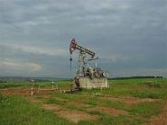 Геологи Беларуси изучают возможность добычи нефти из более глубоких горизонтов земли<br />