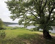 Беларусь и Швеция обменяются опытом в области мониторинга окружающей среды