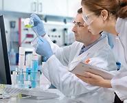 Ученые впервые получили стволовые клетки путем клонирования человека<br />
