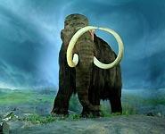 Ученые намерены возродить мамонтов через 30-50 лет<br />