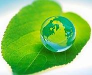 """Белорусская резолюция по """"зеленой экономике"""" единогласно принята на заседании ПА ОБСЕ<br />"""