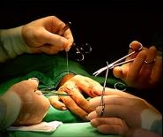 В Беларуси за пять лет выполнено 180 операций по пересадке печени<br />