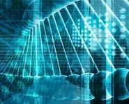 БГУ первым из белорусских вузов будет готовить специалистов по биоинформатике