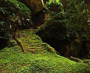 Экотропу в кронах деревьев построят в Березинском заповеднике к 2016 году<br />