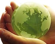 Экологи начали общественный мониторинг воздействия Белорусской АЭС на окружающую среду<br />