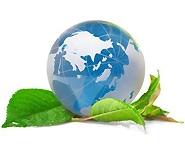 Презентация проекта общественного мониторинга воздействия БелАЭС на окружающую среду пройдет сегодня в Минске<br />